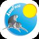 AssoFoca