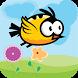 Bird Games by DigBazar Ltd