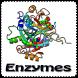 Enzymes by Adelkaram