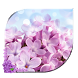 Lavender android Live Wallpaper by creative 3D Themes