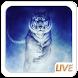 Cool Tiger Live Wallpaper by Live Wallpaper Workshop