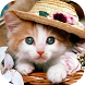 Cats & Dogs Set Wallpapers by Wallapa