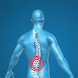 Back Pain Relieving Exercises by Dr.Kavin Khatri