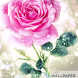 Happy rose day live wallpaper by Creative apps and wallpapers