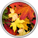Autumn Live Wallpaper by HQ Awesome Live Wallpaper