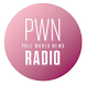 PWN Radio by Nobex Partners - en