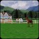 Horse Farm Livewallpaper 3D by castor-09