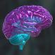 BrainExplain by COBBOT