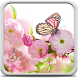 Flowers Live Wallpaper by Creative Factory Wallpapers