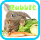 Rabbit Live wallpaper by Peanut