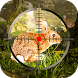 Rabbit Hunting Sniper 3d by Prograssive Games