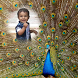 Peacock Feather Photo Frame by bubbles app