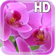 Pink Orchid LWP Free by Aquasun Live Wallpaper