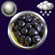 Fruit Clock And Weather Widget by Compass Clock and Weather