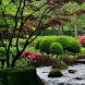 Сад твоей мечты by AppPromoStyle