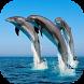 Sea Animals Wallpapers by Wallapa