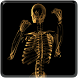 Skeleton Video Live Wallpaper by Jacal Video Live Wallpapers