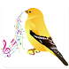 canary singing by APPS & GAMES