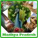 Madhya Pradesh News by Vinay Thakur