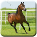 Horse HD Live Wallpapers by claybarapps