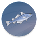 Справочник рыбака by headcorp