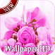 Pink Rose Live Wallpaper by Sritong