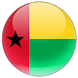 Guinea Bissau MICS by Community Systems Foundation