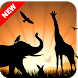Animal Wallpapers & Backgroungs by ⭐ 7Fon Wallpapers