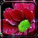 Shiny Flowers Live Wallpaper by Live Wallpaper HD 3D