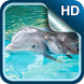 Dolphin Live Wallpaper HD by Dream World HD Live Wallpapers