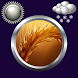 Wheat Clock Weather Widget by Compass Clock and Weather