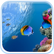 Ocean Fish Live Wallpaper by Live Wallpaper HQ