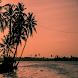 Kochi Tourist Places (Guide)
