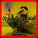 قصص وروايات مغربية بالدارجة by CreatorApps