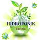 Hidroponik Tutorial by Solusi Ilmu