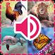 اصوات الحيوانات by Qays3DD
