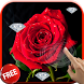 Diamonds and Roses LWP by CharlyK LWP