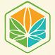 Cannabis News Box by SNO Sites