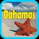 Booking Bahamas Hotels by travelfuntimes