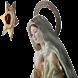 Msjes Ssma Virgen Salta 90-96
