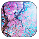 Cherry Blossoms Wallpaper by AppsGooF