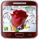Rose Live Wallpaper by Maxi Live Wallpapers