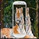 Transparent Screen Wallpaper by Manishdev