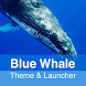 Blue Whale Theme by Theme & Launcher