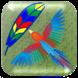Skillful Bird by Curiosity Company