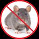 Anti Rat Simulator by alphadroid
