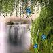 Waterfall Creeper LWP by Daksh Apps