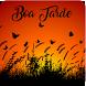 Boa Tarde by V.S.J studio