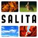 4 Larawan 1 Salita by Free Cool Trivia Games