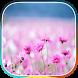 أجمل صور وخلفيات عالية الجودة by Gabr Apps